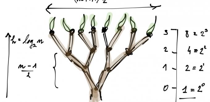 Matematica e alberi