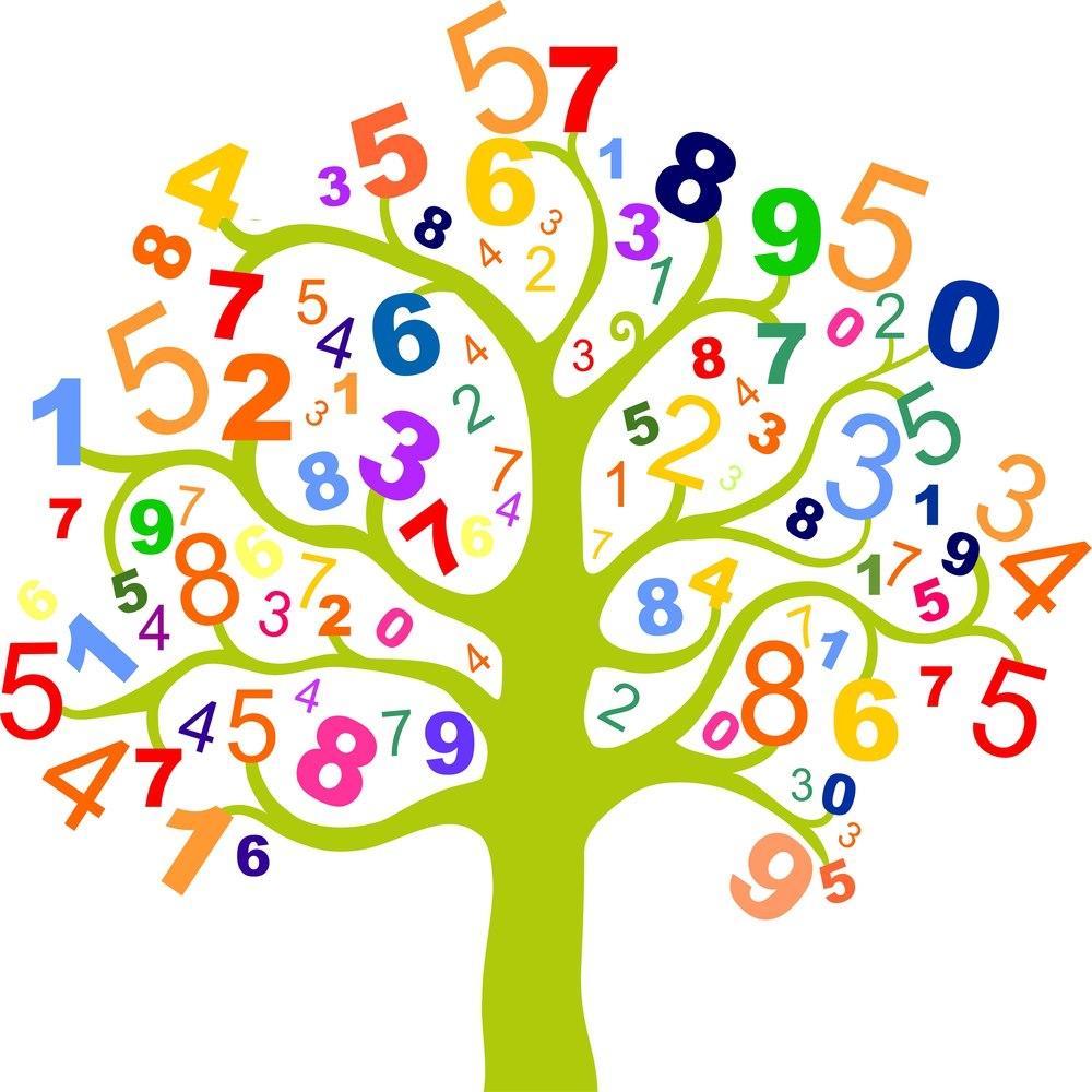 albero dei numeri